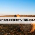 hay-ba1les-shadow-free-license-CC0